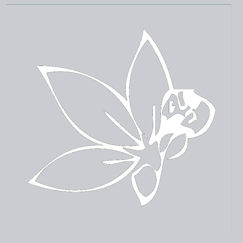 ginseng-icon